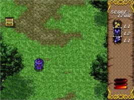 In game image of Twinkle Tale on the Sega Genesis.