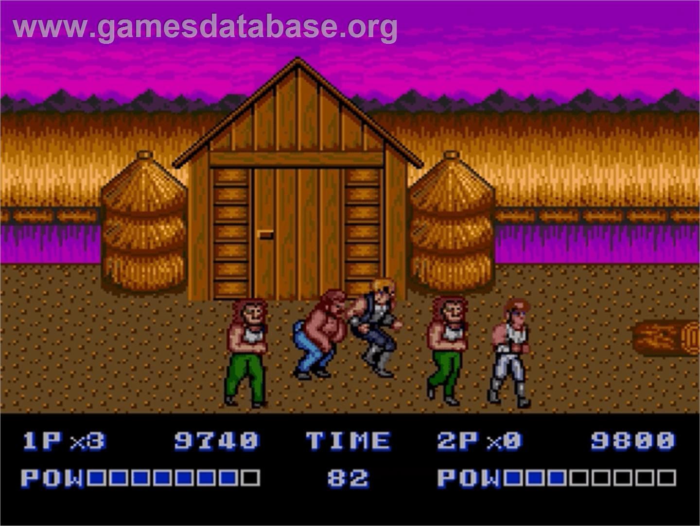 In game image of Double Dragon II - The Revenge on the Sega Genesis.
