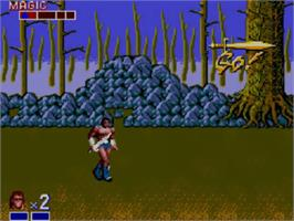 In game image of Golden Axe on the Sega Master System.