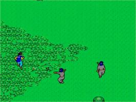 In game image of Ninja on the Sega Master System.