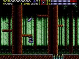 In game image of Ninja Gaiden on the Sega Master System.