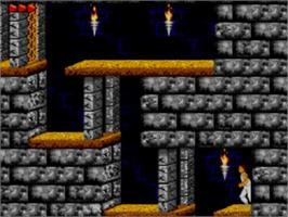 In game image of Prince of Persia on the Sega Master System.