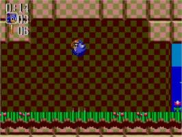In game image of Sonic Chaos on the Sega Master System.