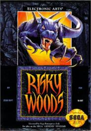 Box cover for Risky Woods on the Sega Nomad.