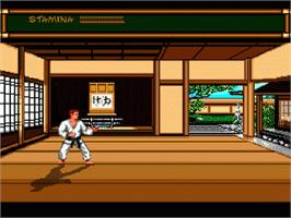 In game image of Budokan: The Martial Spirit on the Sega Nomad.