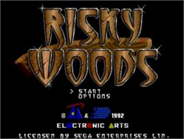 Title screen of Risky Woods on the Sega Nomad.
