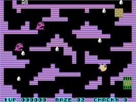 In game image of Chack'n Pop on the Sega SG-1000.
