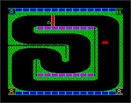 In game image of 3D Stock Cars II on the Sinclair ZX Spectrum.