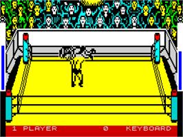 In game image of Bop'N Wrestle on the Sinclair ZX Spectrum.