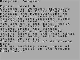 In game image of Dungeon Adventure on the Sinclair ZX Spectrum.