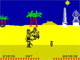 In game image of Fighting Warrior on the Sinclair ZX Spectrum.