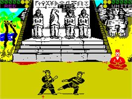 In game image of International Karate on the Sinclair ZX Spectrum.