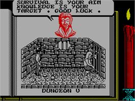 In game image of Knightmare on the Sinclair ZX Spectrum.
