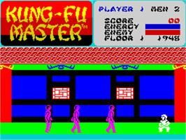 In game image of Kung-Fu Master on the Sinclair ZX Spectrum.