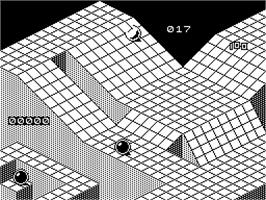 In game image of Marble Madness Construction Set on the Sinclair ZX Spectrum.