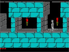In game image of Prince of Persia on the Sinclair ZX Spectrum.