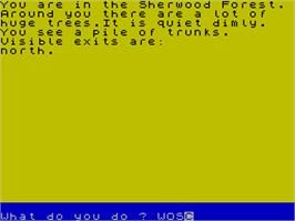 In game image of Robin Hood: Legend Quest on the Sinclair ZX Spectrum.
