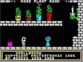 In game image of Spellbound on the Sinclair ZX Spectrum.