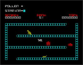 In game image of The Birds and the Bees II: Antics on the Sinclair ZX Spectrum.