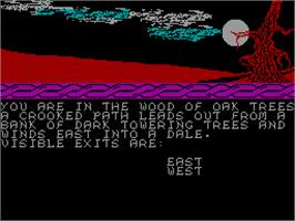 In game image of Wizards Spell on the Sinclair ZX Spectrum.