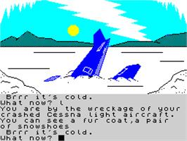 In game image of Wonder Boy in Monster Land on the Sinclair ZX Spectrum.