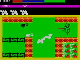 In game image of Wriggler on the Sinclair ZX Spectrum.