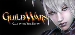 Banner artwork for Guild Wars® Game of the Year Edition.