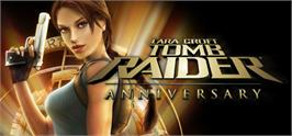 Banner artwork for Tomb Raider: Anniversary.
