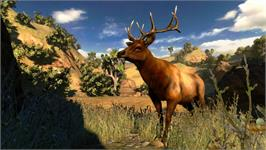 In game image of Cabela's® Hunting Expeditions on the Valve Steam.