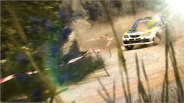 In game image of Colin McRae DiRT 2 on the Valve Steam.