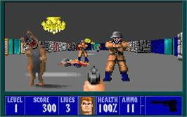 In game image of Wolfenstein 3D on the Valve Steam.